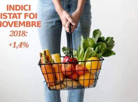 Indice Istat FOI di novembre 2018 al +1,4%